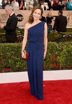 LOS ANGELES, CA - JANUARY 30: Actress Diane Lane attends The 22nd Annual Screen Actors Guild Awards at The Shrine Auditorium on January 30, 2016 in Los Angeles, California. 25650_015 (Photo by Jason Merritt/Getty Images for Turner)