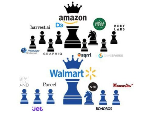 Acquisitions by Amazon and Walmart 2017-2018