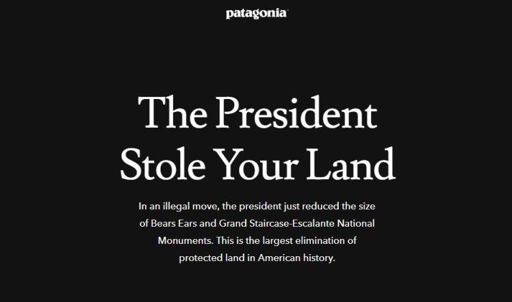 Fashion retail activism fashion politics patagonia president stole your land