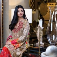 Zunuj Definition Luxury Chiffon Collection 2020 By Zunn Fashion Studio Zunn Winter Collection with Price Buy Online