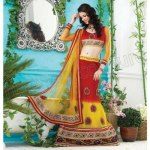 Party wear lehenga choli dress collection (4)