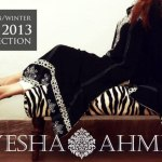 Ayesha Ahmed Autumn Winter eid Collection 2013 (5)