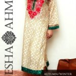 Ayesha Ahmed Autumn Winter eid Collection 2013 (7)