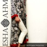 Ayesha Ahmed Autumn Winter eid Collection 2013 (1)