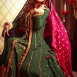 Bridal Dress collection for Women by Resham Revaj (3)