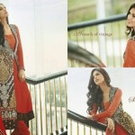 Anarkali Luxury Royal style Formal Dress collection