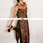 Women Casual Wear Collection 2013-2014 by Ali Fashion Designer (1)