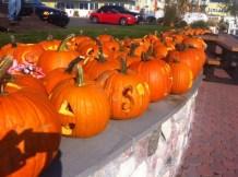 pumpkins-3-1024x765