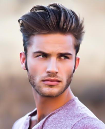 pompadeour hairs