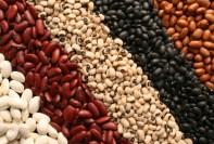 beans benefits
