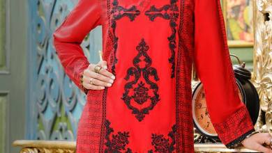 Zeniya Pret Winter Collection 2016 Ready To Wear Dresses