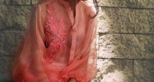 sabyne-winter-luxury-collection-modern-dresses-2016-17-2