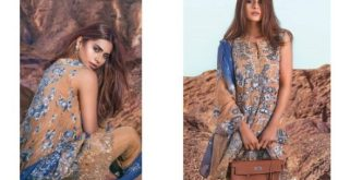 mina-hassan-embroidered-chiffon-formal-dresses-2016-17-8