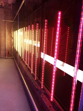 An image taken from the 2018 installation #MulberryLights at 100 Regent Street from fashion brand Mulberry as part of their Christmas campaign featuring some pink neon lights in a row on a wall. Fashion Voyeur Blog