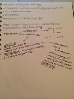 Reflective Appraisal Workshop scribbles