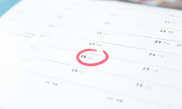 Vesting Schedules and Options