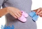 كيف يحدث الحمل بتوام