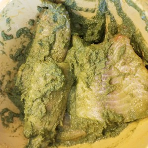 mix well and coat the fish with marinade