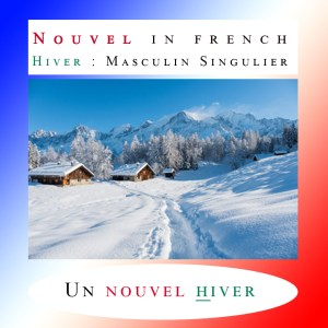 How to use the French Adjective NOUVEL 🤙 ?