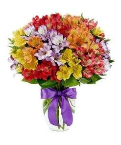 Rainbow Peruvian Lily Flower Bouquet