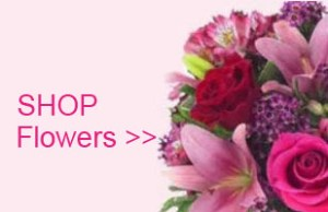 Shop Flowers Same Day Delivery