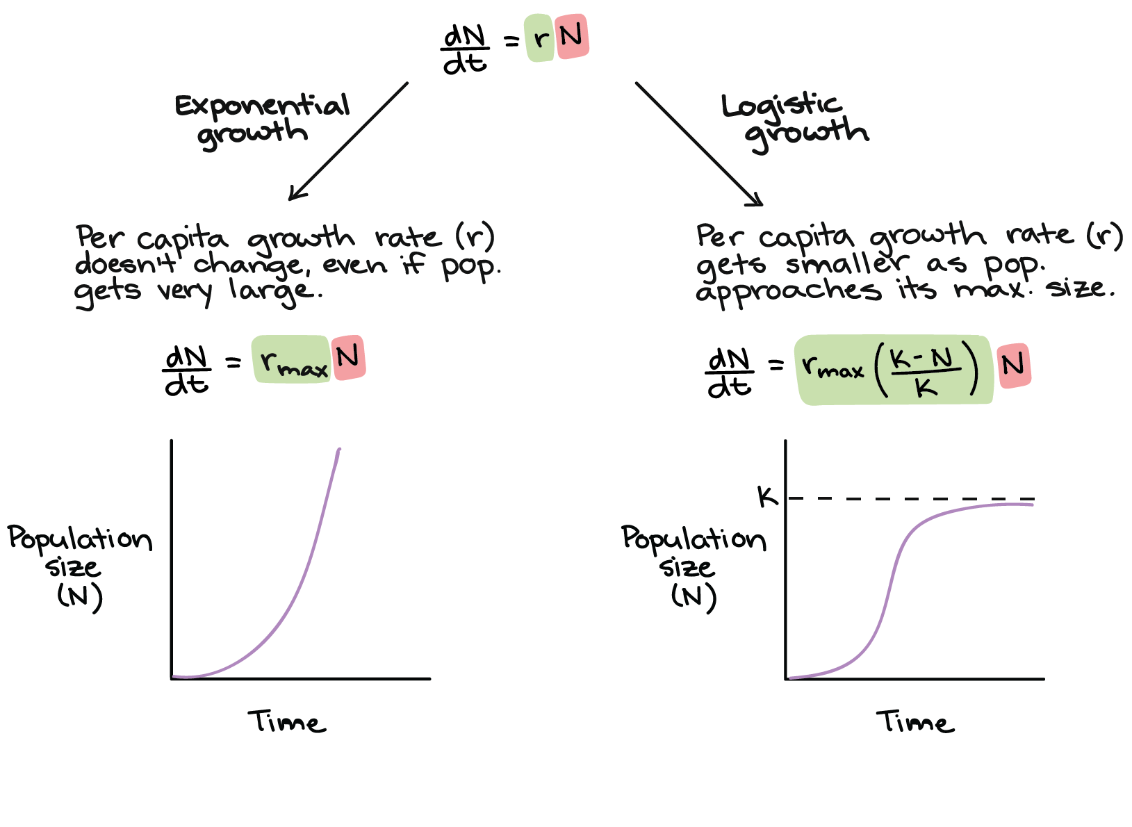 Logistic Growth Equation Khan Academy
