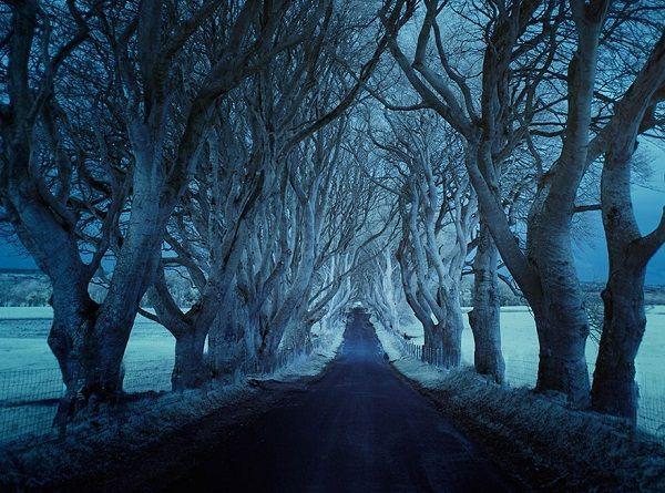 Povești înfricoșătoare pe drumul vieții. Un incident teribil pe pistă. Drumul magnetic Sahalin