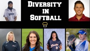 Fastpitch Network Diversity Series