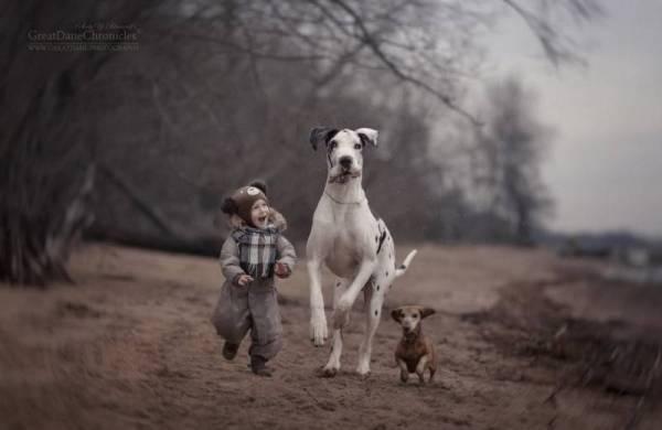 Самые позитивные фото детей с огромными собаками, которые ...