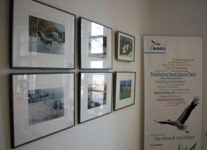 Kranich Aquarelle bei NABU Schwerin (c) Frank Koebsch