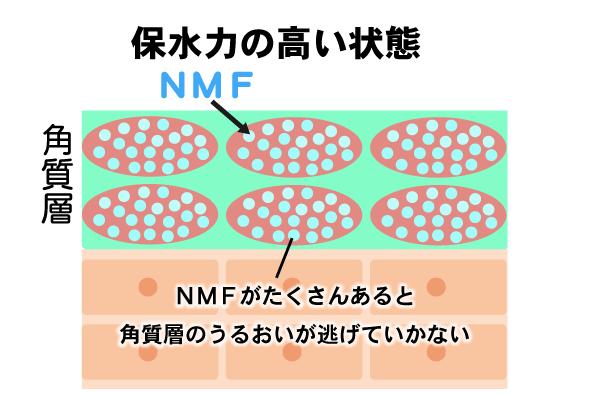 NMFマシュファムディープモイストローション