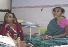 ambikapur dengue, holy cross hospital , odgi surajpur