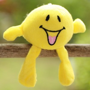 Stuffed Smiley