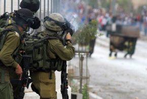قوات الاحتلال تقوم بعمليات عربدة في قرية جيت بقلقيلية