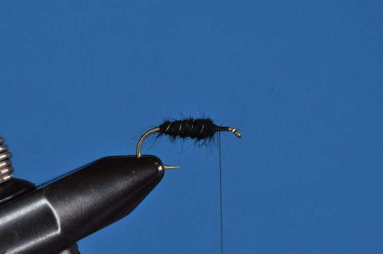 Baby Leech Fly Step-by-Step