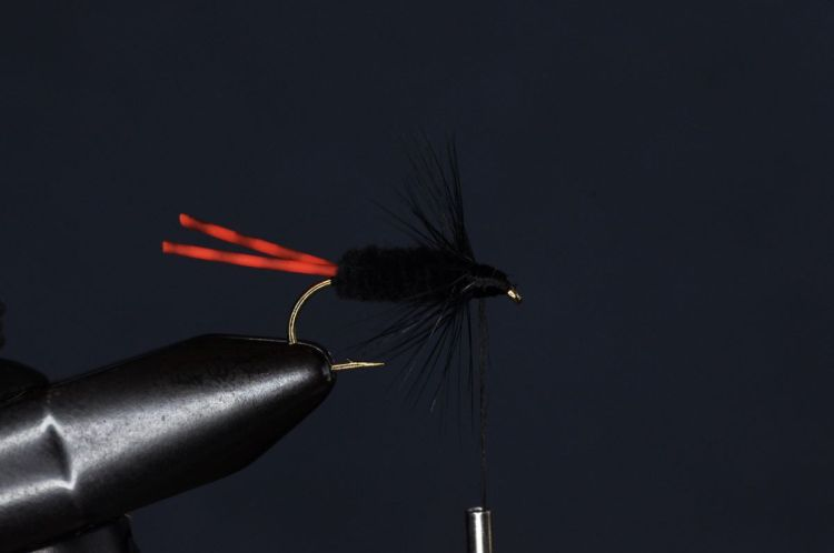Bluegill Killer Fly Step-by-Step