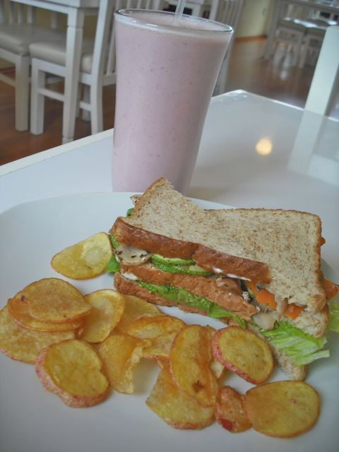 https://i1.wp.com/fatgayvegan.com/wp-content/uploads/2012/08/sandwich-shake.jpg?fit=480%2C640