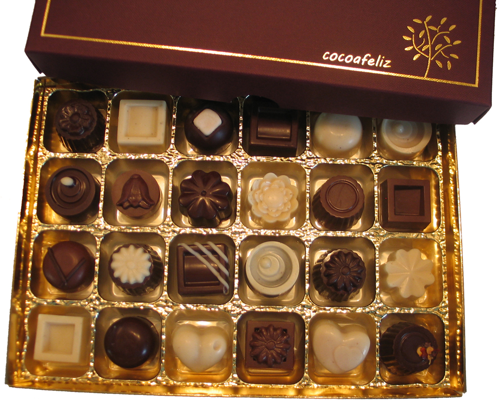 https://i1.wp.com/fatgayvegan.com/wp-content/uploads/2014/09/24chocbox.jpg?fit=1000%2C803