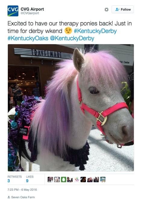 kentucky pony