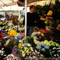 Flower vendor in Campo de Fiori