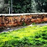 Graffiti near Piazza del Popolo