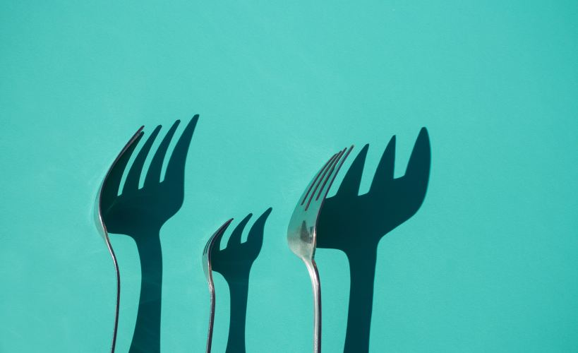 Weightloss image - view of forks and their shadows