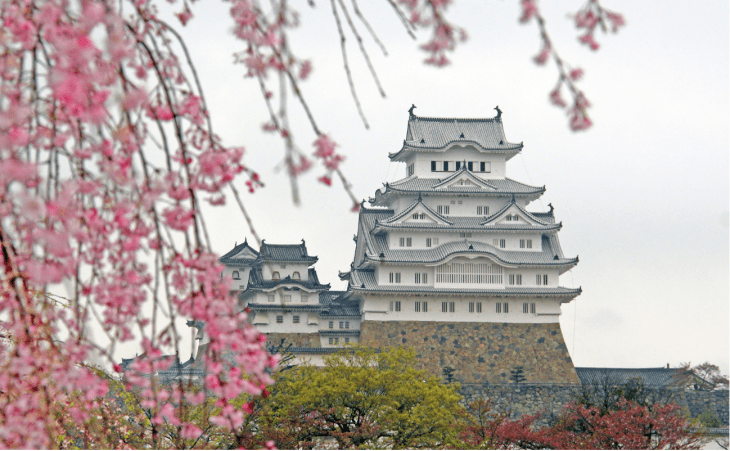 Himeji Castle with cherry blossom in the foreground.