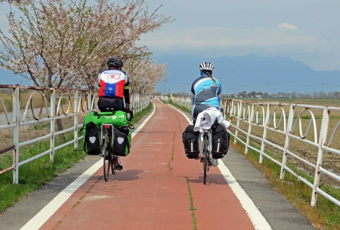 Rear view of Stuart and tamsyn on their bikes in Japan. A cherry blossom tree can be seen.