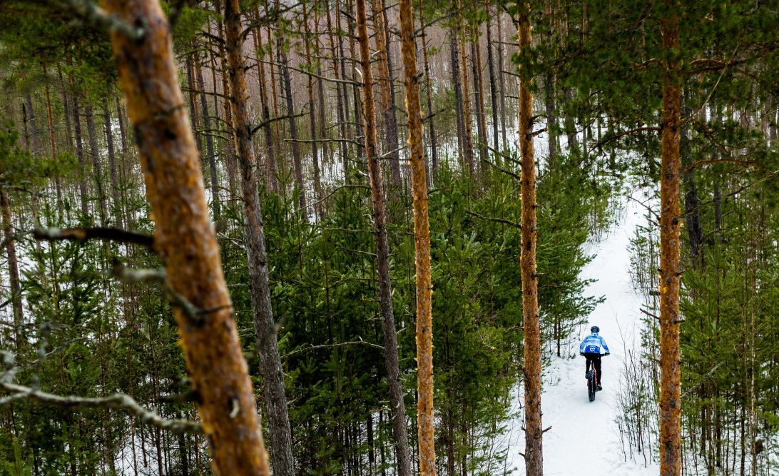 Person cycling in a snowy forest