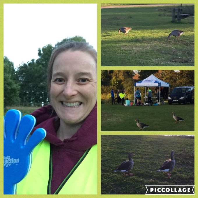 Collage from SUTRI aquathlon showing Tamsyn, some marshals and some ducks