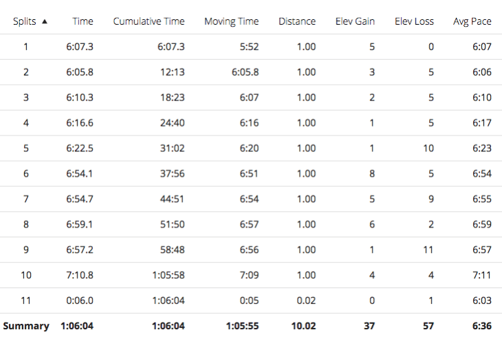 Tamsyn's splits for Christchurch Christmas Pudding 10k.