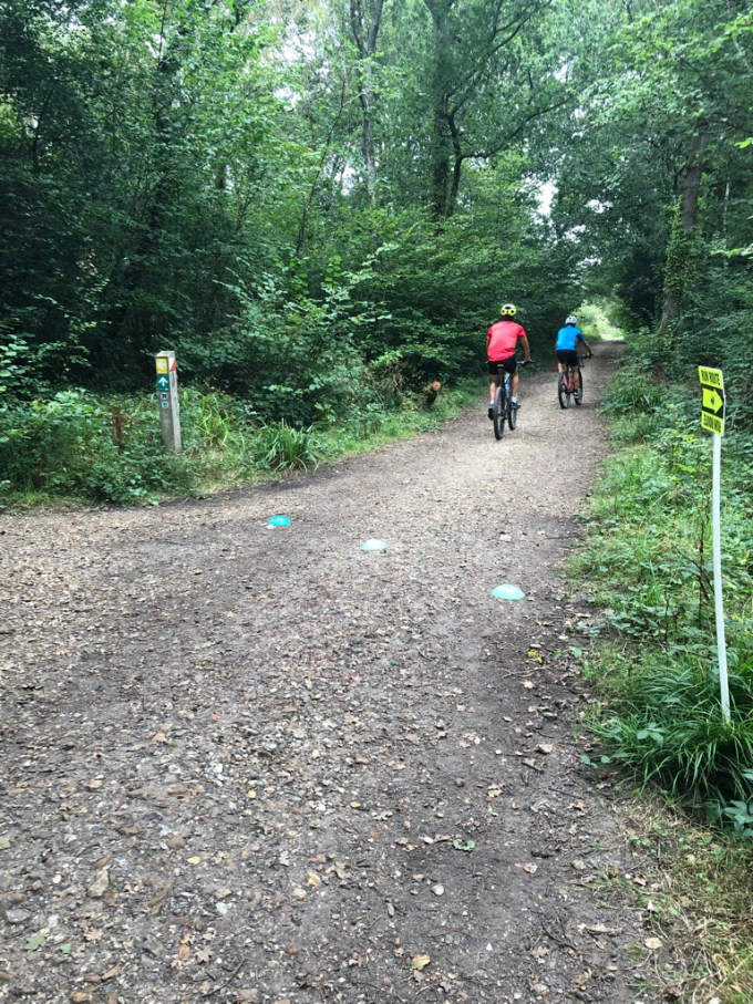 Cyclists on a path in Staunton Country Park.