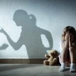 תקצוב התכנית הלאומית למאבק באלימות במשפחה.