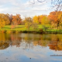 DAILYPOST PHOTO CHALLENGE: REFRACTION:  Fall at the Arboretum